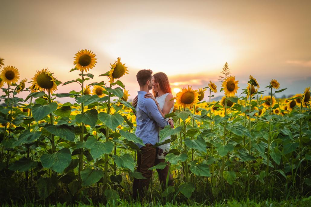 Engagement a Cologna Veneta - coppia abbracciata tra i girasoli